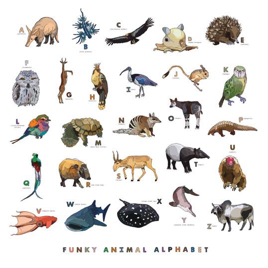 Funky Animal Alphabet