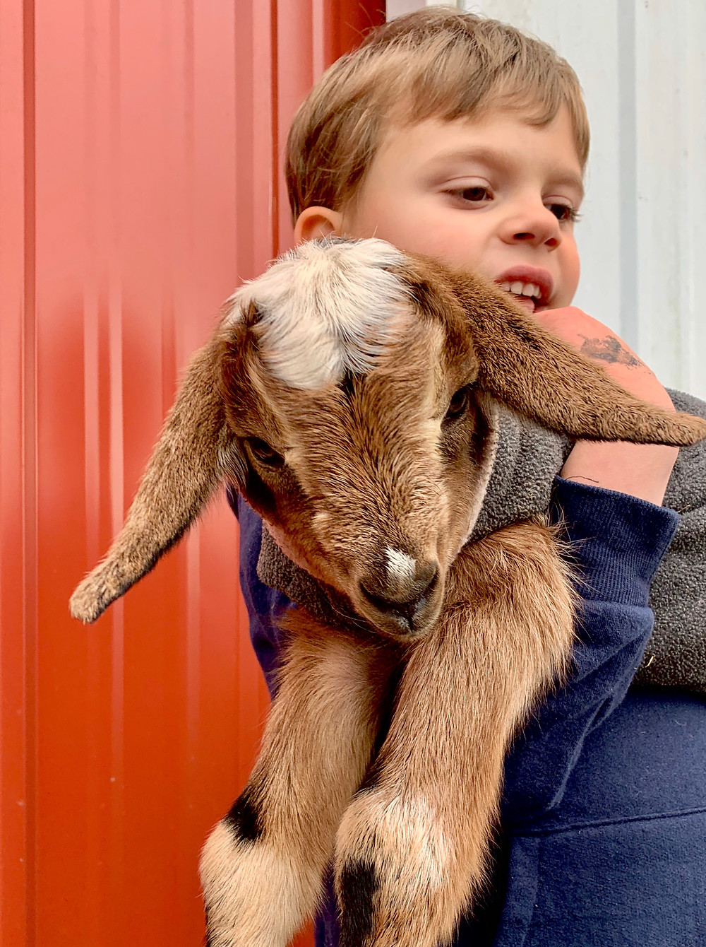 Our Grandson with His Goat, Ally. 2/9/20