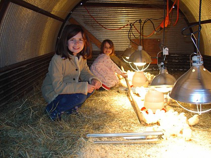 Rachel and Grace with Our Baby Chicks, 2010