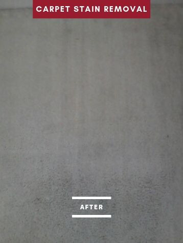after carpet stain removal service.jpg