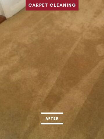 after carpet cleaning.jpg