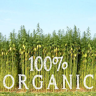 Organic fabrics hemp cotton