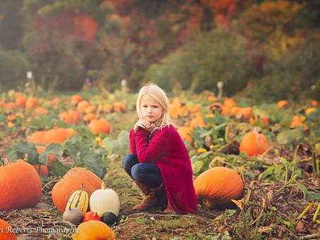 Its pumpkin time again!!!