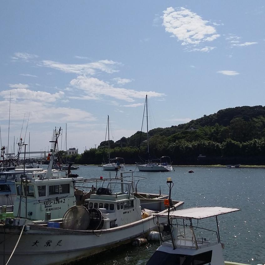 穏やかな福間の漁港