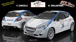 F. Cancelli - D. Tagliaferri