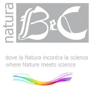 prodotti B&C