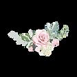 Rose-6.png