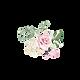 Rose-9.png