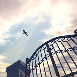 Puerta Del Cielo
