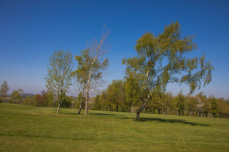 Hole 17_fairway (views)-0565Hole 17_fair