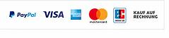 Paypal plus.webp