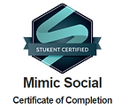 José Góis - Certificado Stukent Mimic Social