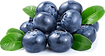 blueberries_PNG22.png