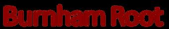 BR logo 139 horizontal.png