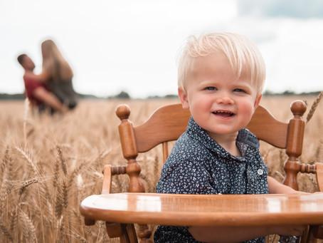 Wheat Field Minis, 2021