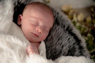One week old! sleeping like a baby!