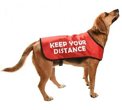 dog-warning-jacket-red social distance.j