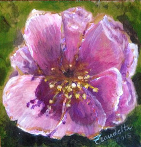 A Painting a Day #57 -  Wild Wild Rose
