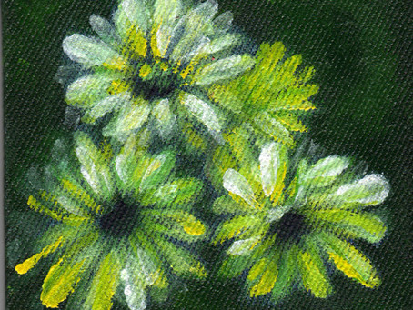 A Painting a Day #1 - Daisies