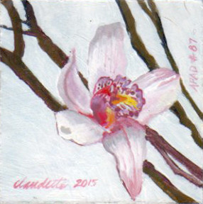 A Painting a Day #87 -  Pink Orchid