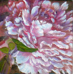 A Painting a Day #51 -  Pink Blush