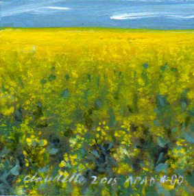 A Painting a Day #80 - Canola Fields