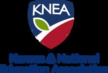 KNEA+pixel.png