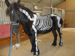 Grace as skeleton for Halloween