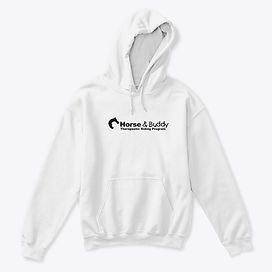 ts hoodie.jpg