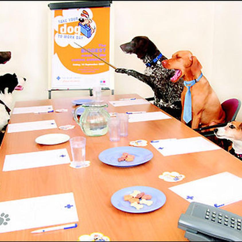 Board Meeting - September 2020