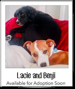 Lacie&Benji.png