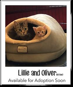 Lillie&Oliver.png