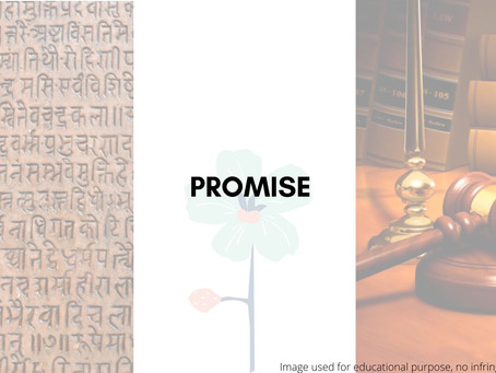 Promise: Through the lens of Law and Linguistics