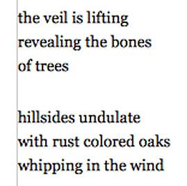 veils.jpg