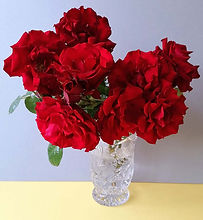 Class 6 Teresa Welch Floribunda Roses.jp