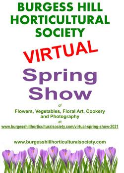 Poster Spring 2021 v1 Virtual