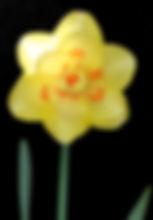 Class 11 Ian Parsons.jpg