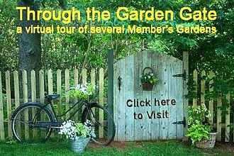 Through%20the%20Garden%20Gate_edited.jpg