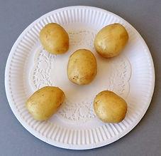 Class 26 Teresa Welch Five potatoes.jpg