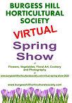 Poster Spring 2020 v1.3 Virtual.jpg