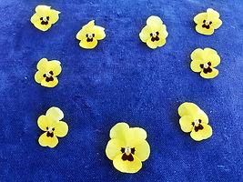 Class 8 Judith Parsons Nine pansies.jpg