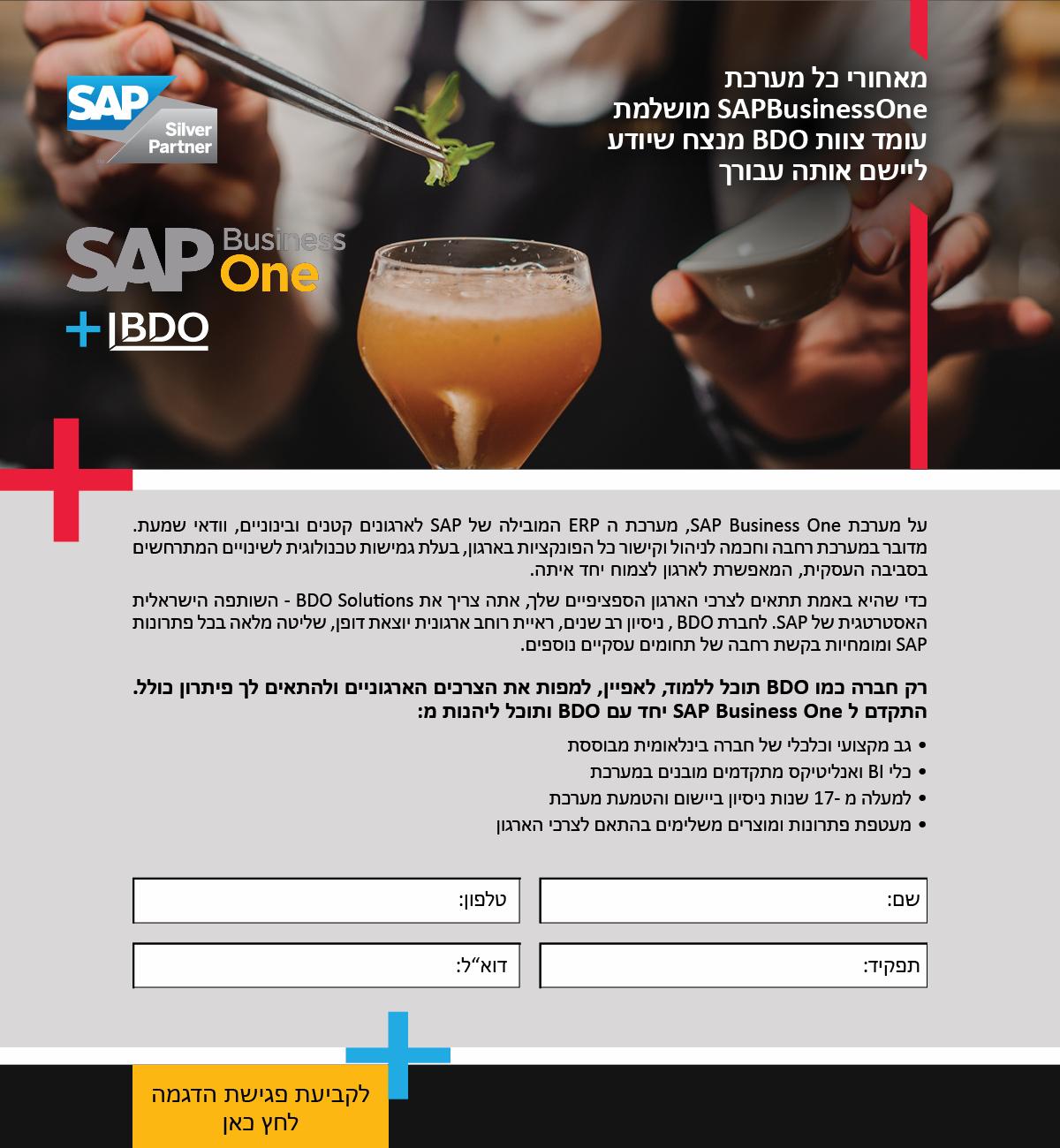 SAP - BDO Landing Page
