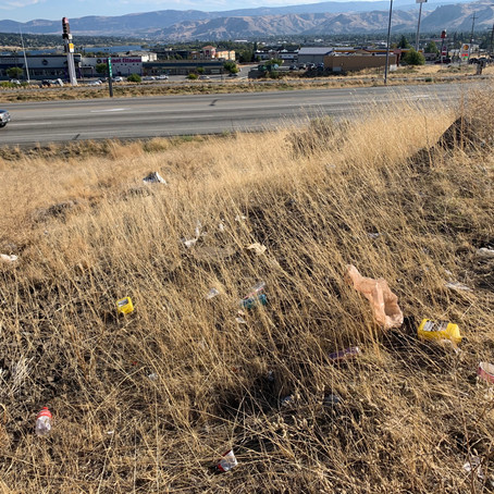 Don't be Trashy: lessons from litter