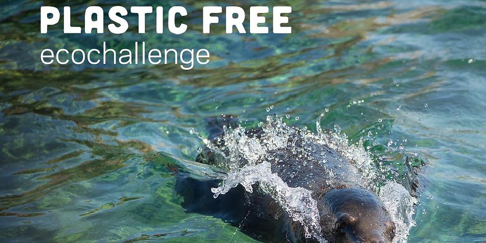 Plastic Free July EcoChallenge - NCW Sustainable Community team