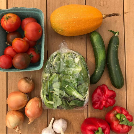 Local Community Supported Agriculture (CSA) Opportunities