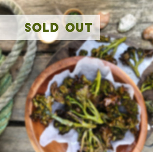 tree tap sold out 2.jpg