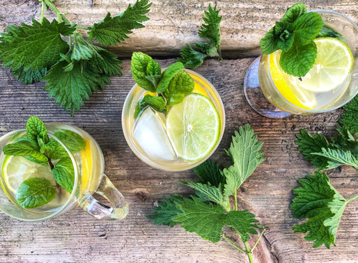 Easy Nettle Beer Recipe