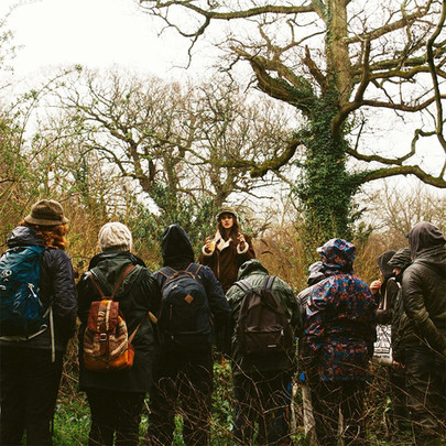 Winter Foraging In Worthing