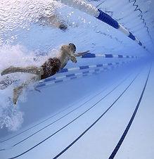 swimmers-79592_640.jpg