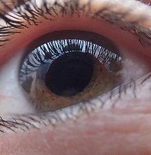 eye-321961_640.jpg
